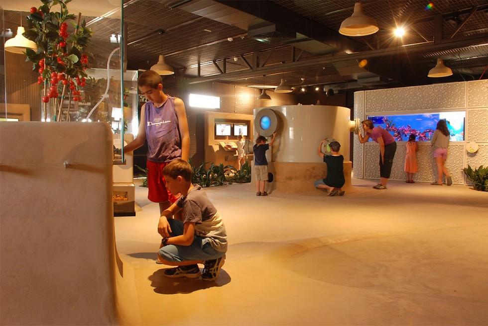 מרכז המבקרים בערכה (מרכז ויידור) (צילום: פרדי נפתלי) (צילום: פרדי נפתלי)