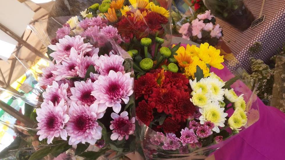 Цветы украсят даже карантин. Фото: Мейрав Кристал