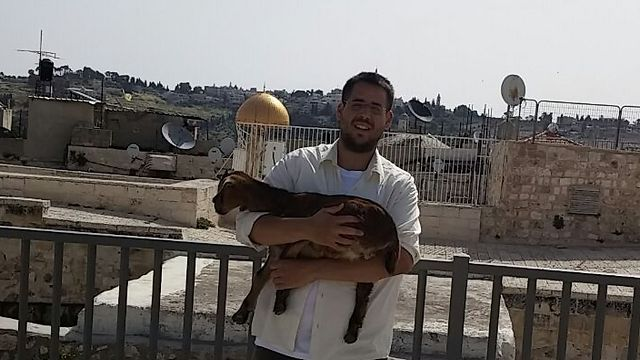 Temple Mount activist carrying goat to the Temple Mount.