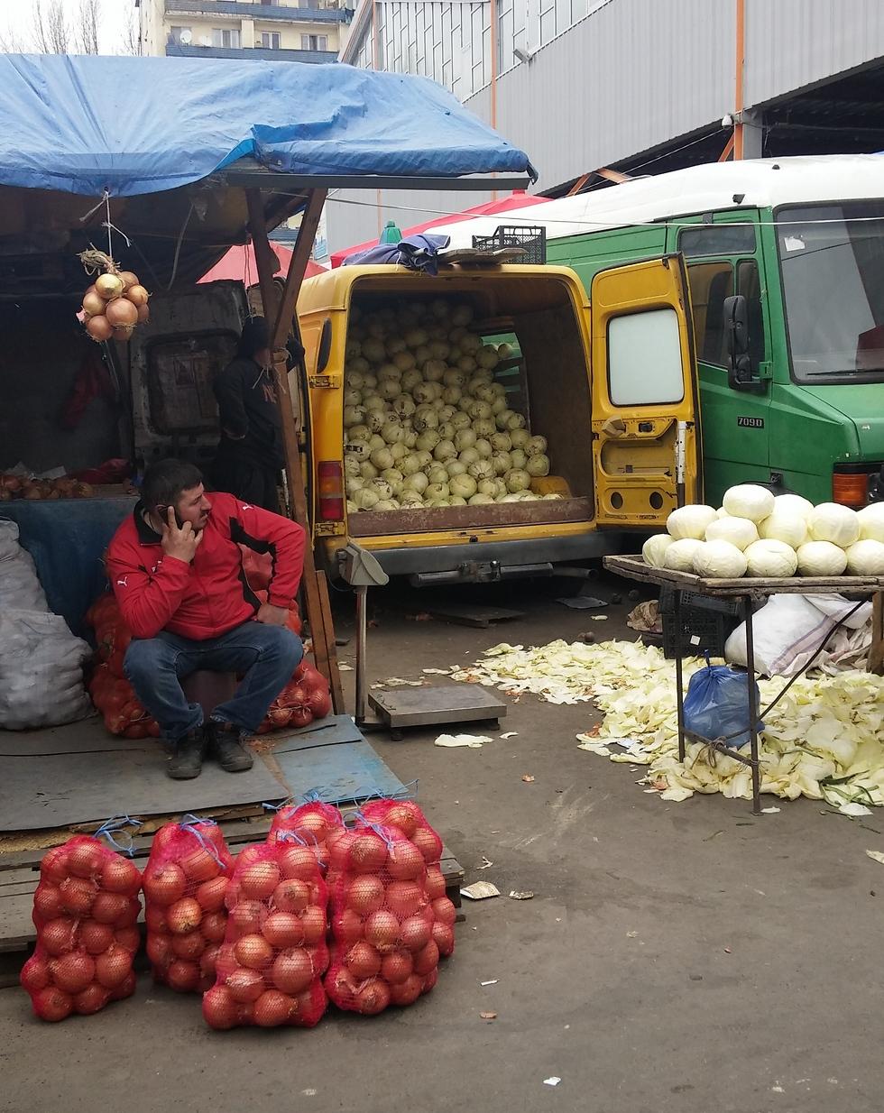 כרובים בהמונים (צילום: מור אלזון) (צילום: מור אלזון)