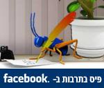 צרצרפיס בפייסבוק