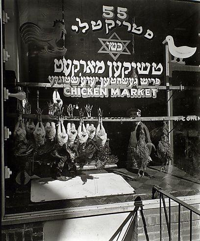 ההנחה הרווחת היא שבשנות העשרים, 40% מהבשר שנמכר ככשר לא היה כשר בכלל (צילום: Courtesy New York Public Library) (צילום: Courtesy New York Public Library)