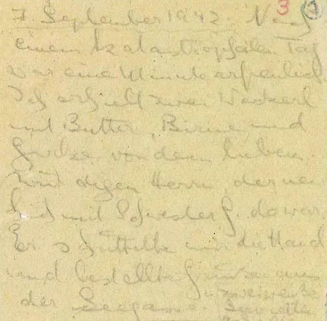 קטע בכתב יד מתוך אחד היומנים (באדיבות הארכיון הציוני המרכזי) (באדיבות הארכיון הציוני המרכזי)