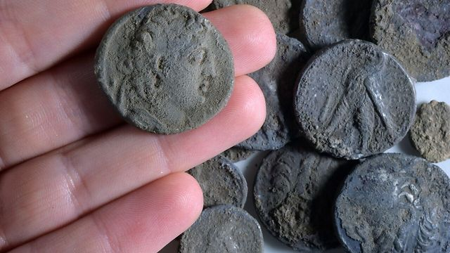 A coin of Antioch VII with others found at the site (Photo: Clara Amit)