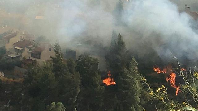 השריפה במבשרת ציון (צילום: דוברות כיבוי אש והצלה)