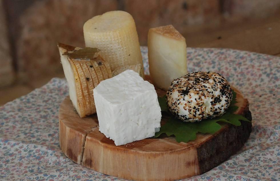 גבינות שקיבלו את תו התקן