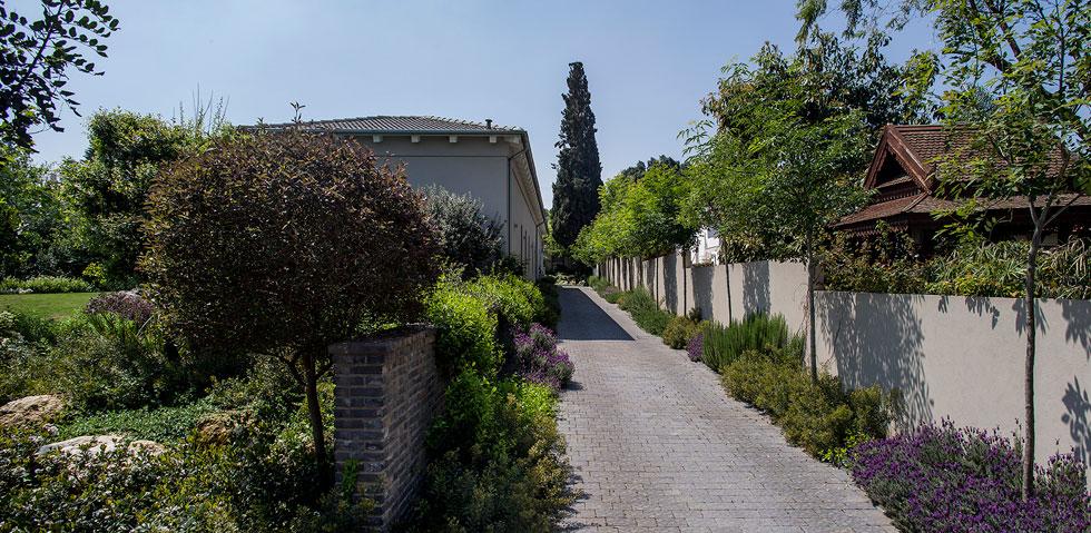 שביל הכניסה רחב ומסתיים בחניה שנמצאת בעומק המגרש, מאחורי הבית. משני צדיו צמחייה נמוכה וקיר נמוך מונע סחף של אדמה מהגינה (צילום: יואב גורין)