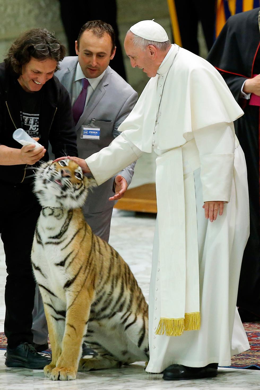 האפיפיור פרנסיסקוס וחבר בוותיקן (צילום:  AP)