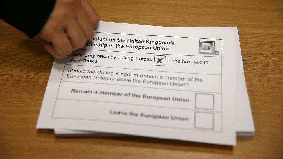 טופסי משאל העם הבריטי (צילום: רויטרס) (צילום: רויטרס)