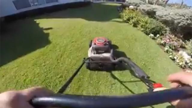 שפירו ומכסחת הדשא המאיימת ()