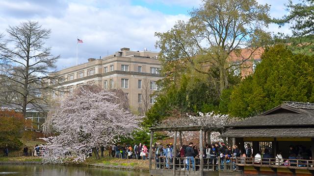 להירגע וללמוד במקום אחד: הגן הבוטני ופרוספקט פארק בברוקלין (צילום: shutterstock) (צילום: shutterstock)