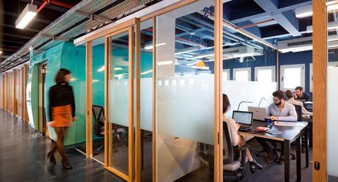 משרדים שקופים שמופרדים באמצעות מסגרת עץ אלון בהיר (צילום: שי אפשטיין)