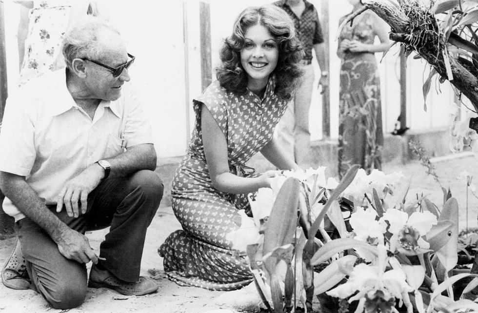 """""""היה אז הרבה כסף בדוגמנות, אבל ידעתי שלכסף הזה יש מחיר. יש מחיר לחיים האלה"""". רינה מור, 1976 (שלום בר טל)"""