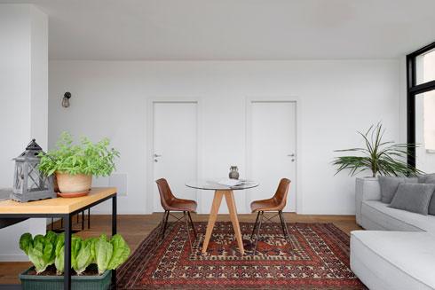 מהסלון שעל הגג דלתות לחדר אורחים וחדר רחצה (צילום: גדעון לוין)