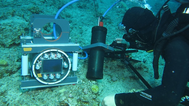 (צילום: Jaffe Lab for Underwater Imaging, Scripps Institution of Oceanography at UC San Diego)