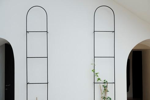 אחרי השיפוץ האחרון, הצמחים מתחילים לטפס מחדש (צילום: גדעון לוין)