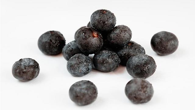פרי האסאי. מכיל סיבים תזונתיים המספקים שובע ומשפיעים על שיפור רמות הסוכר ()