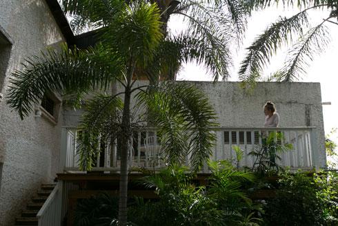 המדרגות המובילות אל הבית מהגינה האחורית (צילום: שירן כרמל)