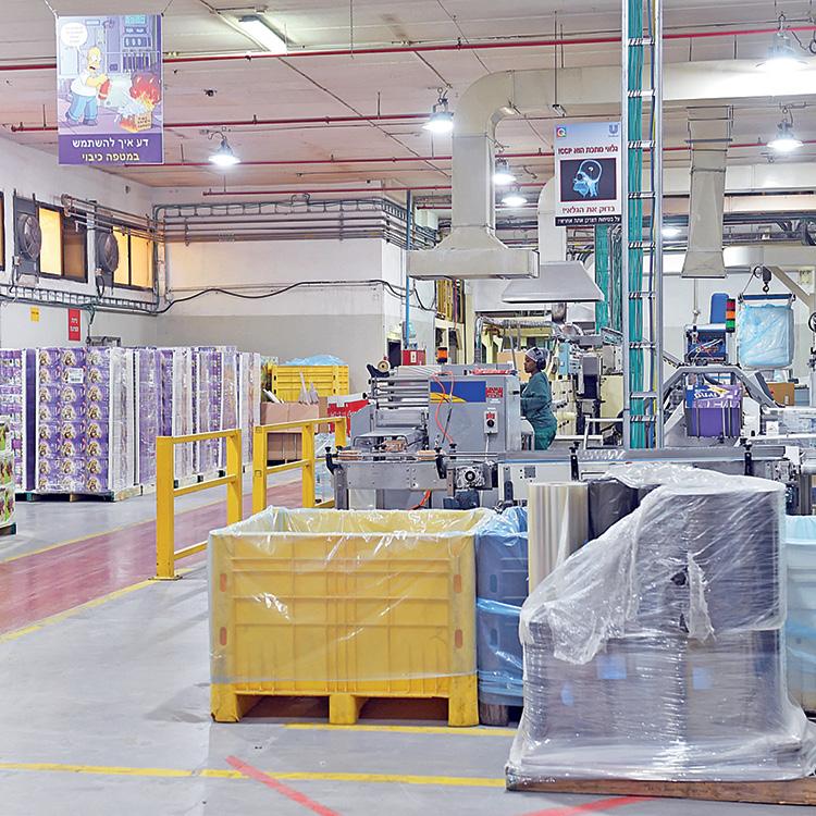 מפעל יוניליוור בערד, בו התגלתה התקלה ()