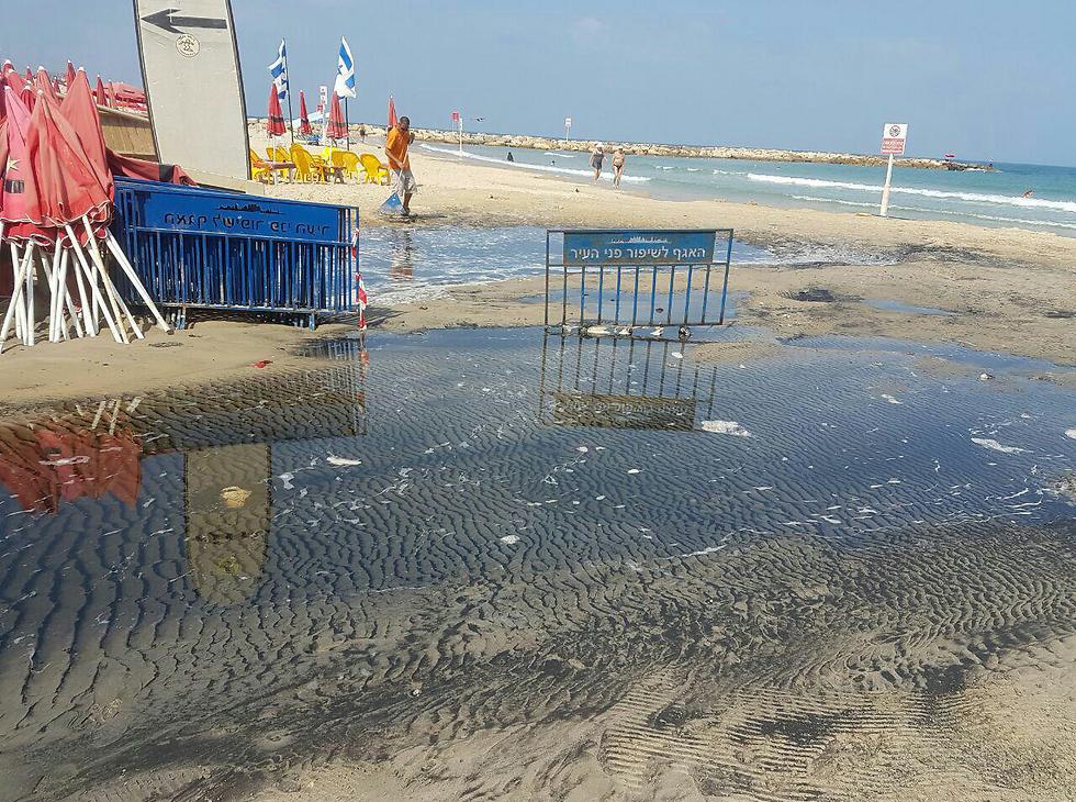 דליפת מי ביוב לחוף הדולפינריום בתל אביב (צילום: טל שגב) (צילום: טל שגב)