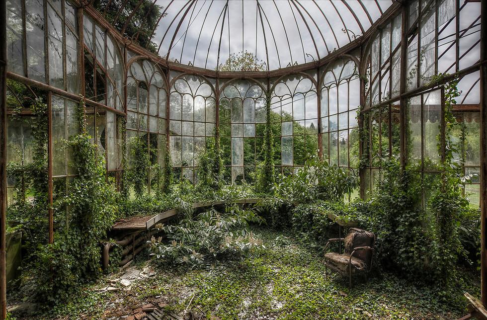 חממה בגן של וילה נטושה. כבר לא בונים מקומות כאלה. אני אוהב את הניגודיות שבין הירוק לרקוב (צילום: Niki Feijen)