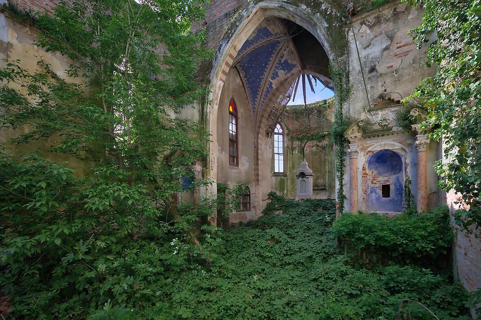 נהר ירוק של עשב זורם דרך שרידי כנסייה עתיקה (צילום: Niki Feijen)