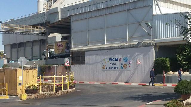 מפעל תלמה בערד (צילום: בראל אפרים) (צילום: בראל אפרים)