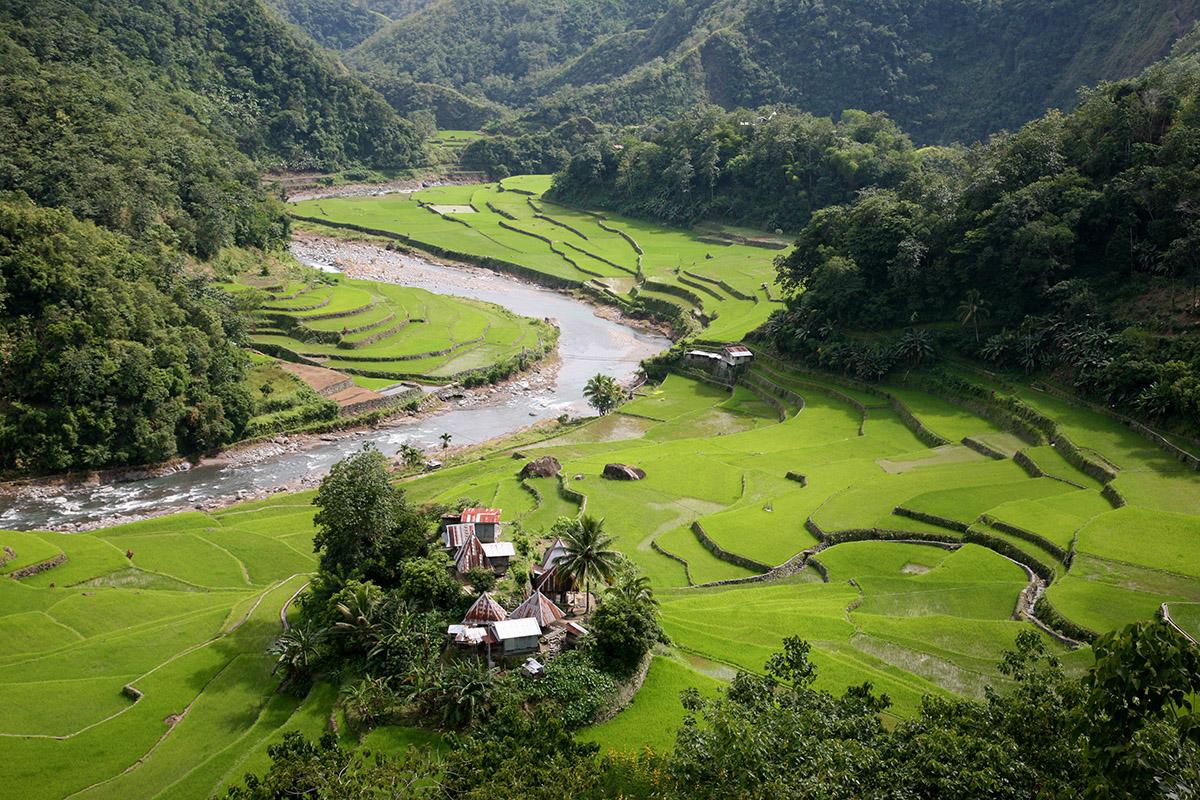 טרסות האורז - עוצרות נשימה (צילום: אורנה פינגל) (צילום: אורנה פינגל)