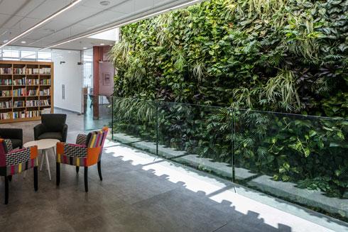 הקיר הירוק ופינת הישיבה. הקיר מכיל מילוי אדמה. סקיילייט מחדיר אור טבעי (צילום: עוזי פורת)