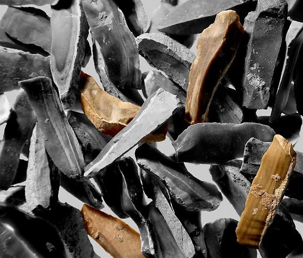 """""""הסכינים"""" שנמצאו במערה (צילום: באדיבות פרופ' רן ברקאי, אוניברסיטת ת""""א)"""