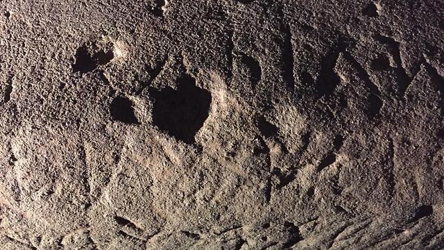 לוח האבן (צילום: Mugello Valley Project) (צילום: Mugello Valley Project)