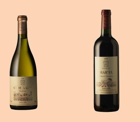 Clos de Gat wines