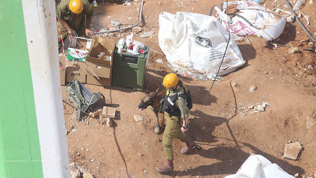 IDF Search and Rescue looking for survivors (Photo: Motti Kimchi)