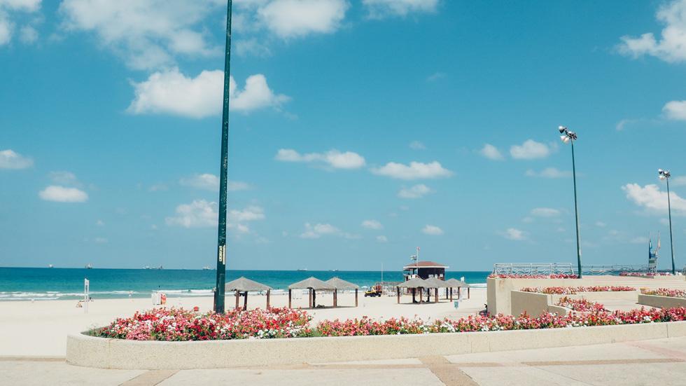 המקום: חוף הקשתות באשדוד  (צילום: אורית פניני)