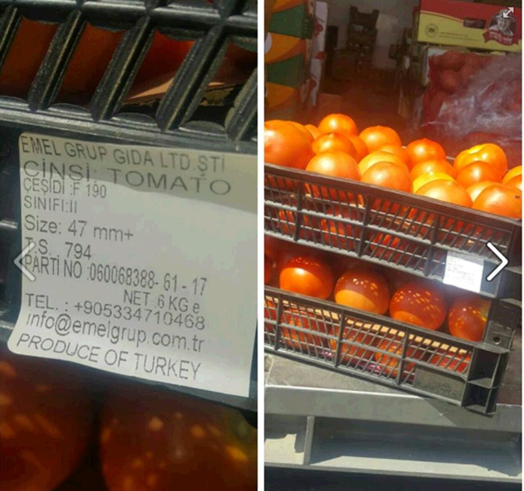 """עגבניות מטורקיה בבסיסי צה""""ל (צילום מסך מפייסבוק) (צילום מסך מפייסבוק)"""