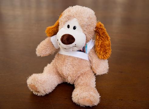 """""""הפעם הראשונה שגיא אמר לי שהוא אוהב אותי, הוא לא אמר במילים, אלא הביא לי במתנה את הדובי הזה, שכתוב עליו 'איי לאב יו'"""" (צילום: ענבל מרמרי)"""