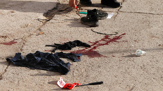 פיגוע בתל רומיידה, חברון (צילום: AFP) (צילום: AFP)
