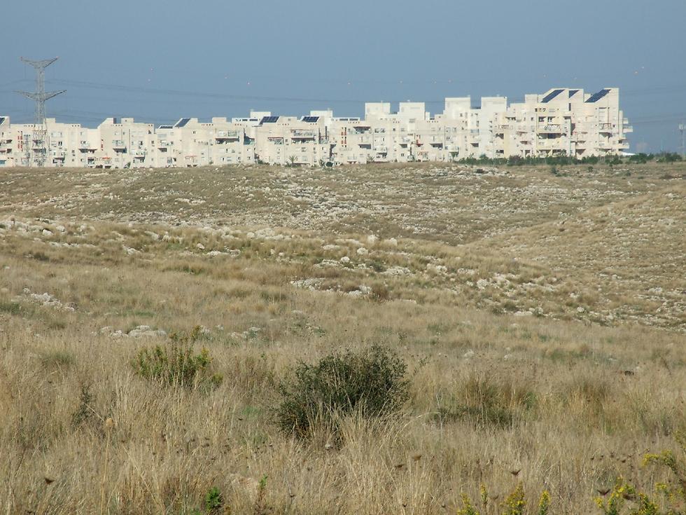 תושבים בעיר אלעד מתקשים להבין את השיקול (באדיבות החברה להגנת הטבע) (באדיבות החברה להגנת הטבע)