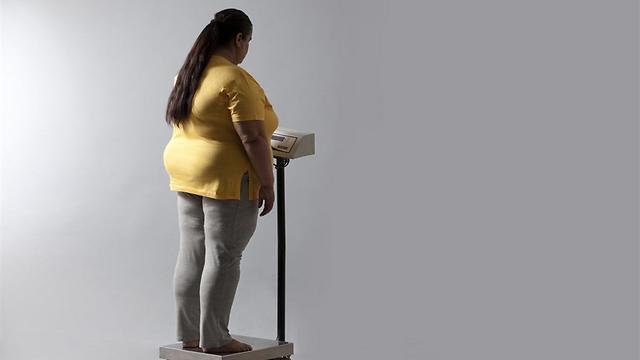המחקרים הוכיחו שהממתיקים מעכבים את פירוק השומן בגוף ובכך גורמים להשמנה (צילום: shutterstock)