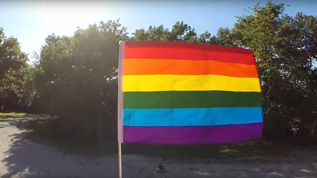 דגל הגאווה (ארכיון) ()