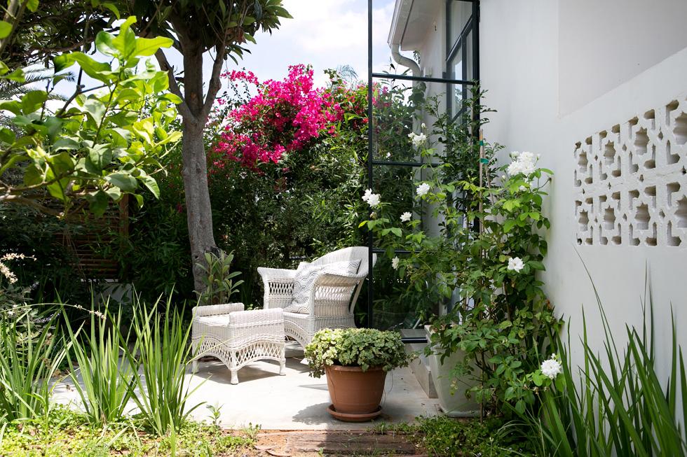 מחדר השינה אפשר לצאת למרפסת טובלת בירק, שפונה אל הרחוב. הגינה האחורית, הגדולה, פונה לחורשה וותיקה  (צילום: שירן כרמל)