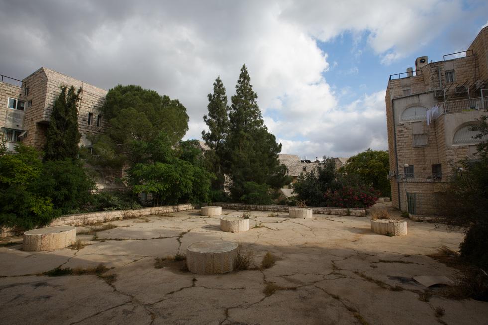 בחצר הפנימית של המתחם, שמאכלס 300 דירות בסך הכל. הגינות של אדריכלי הנוף יהלום-צור כוסו בצמחי בר (צילום: דור נבו)