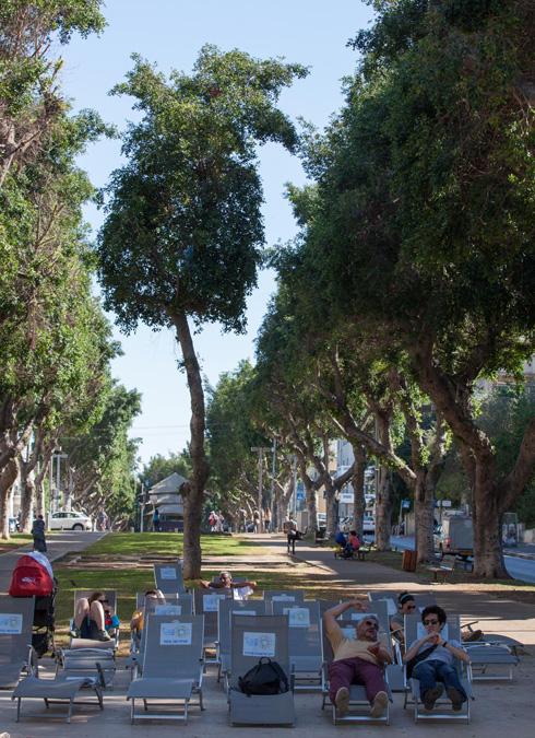 לנוח בצל עצים - זכות בסיסית. שדרות רוטשילד בת''א (צילום: דור נבו)