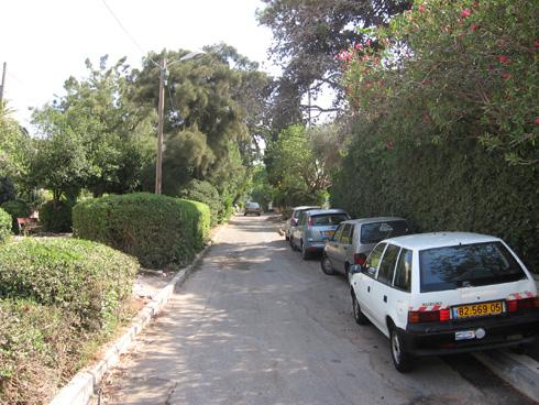 לפני הפרויקט. המחסור בחניה עמד להפוך את שדרות הנדיב למגרש חניה (צילום: דוד אלחנתי אדריכלות נוף)