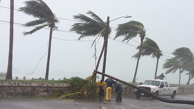 """רוחות במהירות 170 קמ""""ש בפלורידה (צילום: AFP)"""