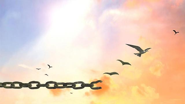 הסליחה תוציא אתכם לחופשי (צילום: shutterstock) (צילום: shutterstock)