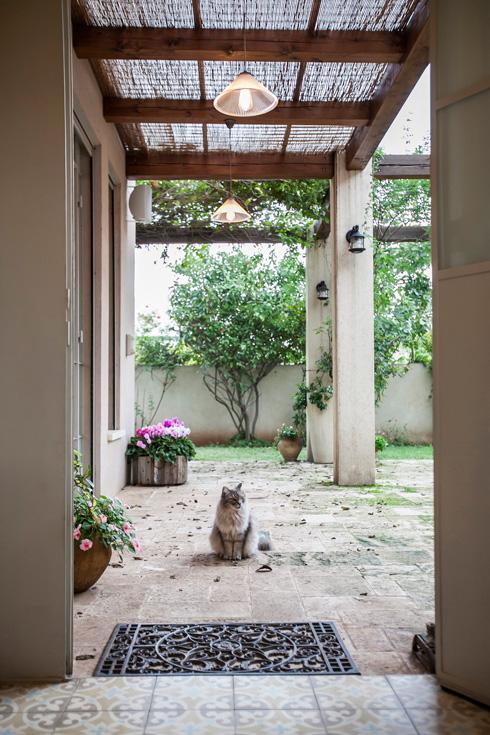 הבית של מיכל וייסמן ברמות השבים: לחצו לכתבה המלאה (צילום: שירן כרמל )