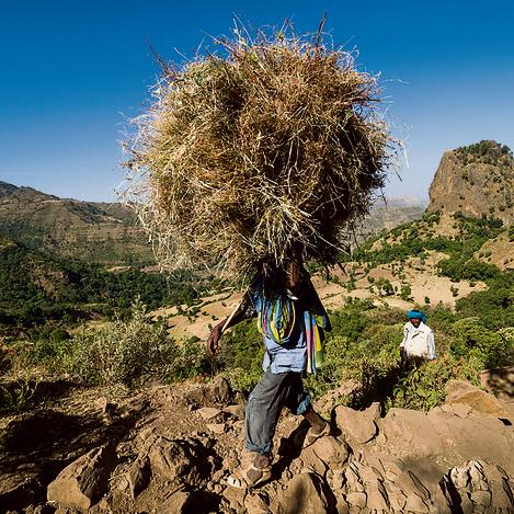 """אזור גונדר בצפון אתיופיה. """"חיה עד גיל שמונה בכפר שהוא ברמה של ימי הביניים"""""""