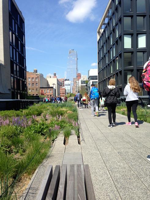 טיילת High Line שתכנן משרד האדריכלים לידר-סקופידיו-רנפרו. האופק נראה טוב מהמשרד שלהם (צילום: הילה שמר)