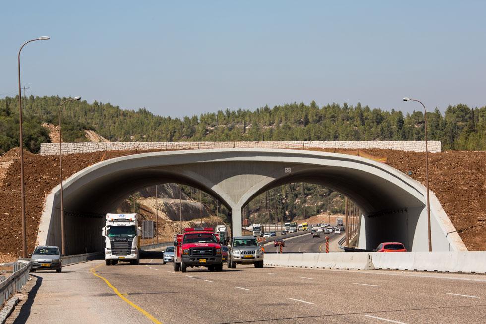 הגשר האקולוגי נועד להציל את בעלי החיים משני צדי הכביש. מה הוא עושה לנוף? אי-אפשר היה לתכנן אלמנט זר יותר (צילום: דור נבו)